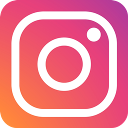 Il profilo Instagram Lepida